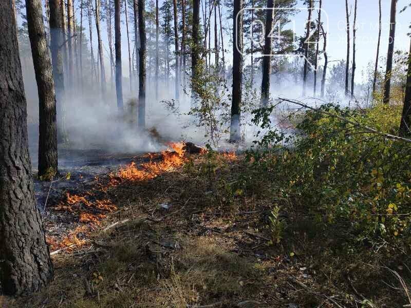 На Житомирщині вогнеборці загасили одинадцять загорянь сухостою, фото-5