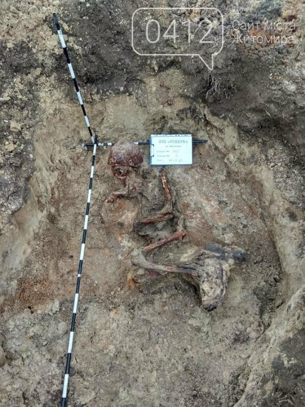 У Коростенському районі пошуківці знайшли останки трьох воїнів РСЧА, які загинули в серпні 1941-го, фото-14