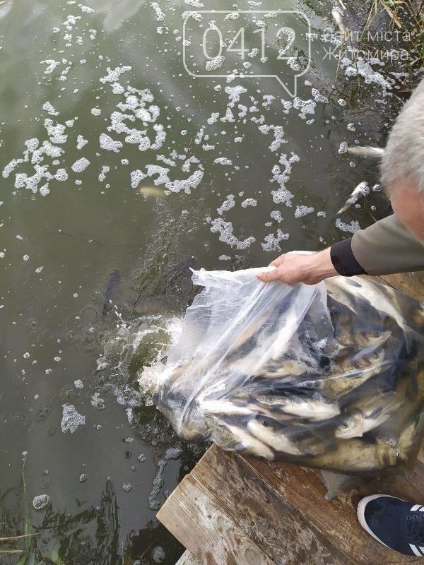 На Житомирщині у водойму поблизу села вселили 2,4 тис молодої риби. ФОТО, фото-1