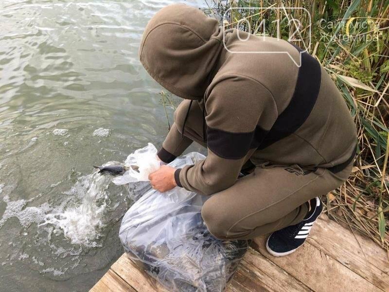 На Житомирщині у водойму поблизу села вселили 2,4 тис молодої риби. ФОТО, фото-4