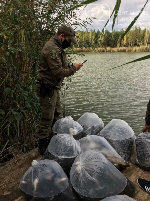На Житомирщині у водойму поблизу села вселили 2,4 тис молодої риби. ФОТО, фото-5