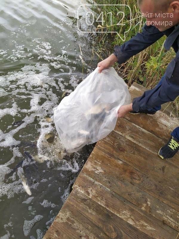 На Житомирщині у водойму поблизу села вселили 2,4 тис молодої риби. ФОТО, фото-6