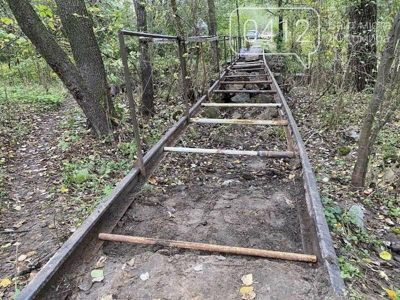 Толока біля річки Кам'янки: як активісти в Житомирі місток ремонтували. ФОТО, фото-2