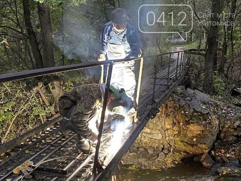 Толока біля річки Кам'янки: як активісти в Житомирі місток ремонтували. ФОТО, фото-5