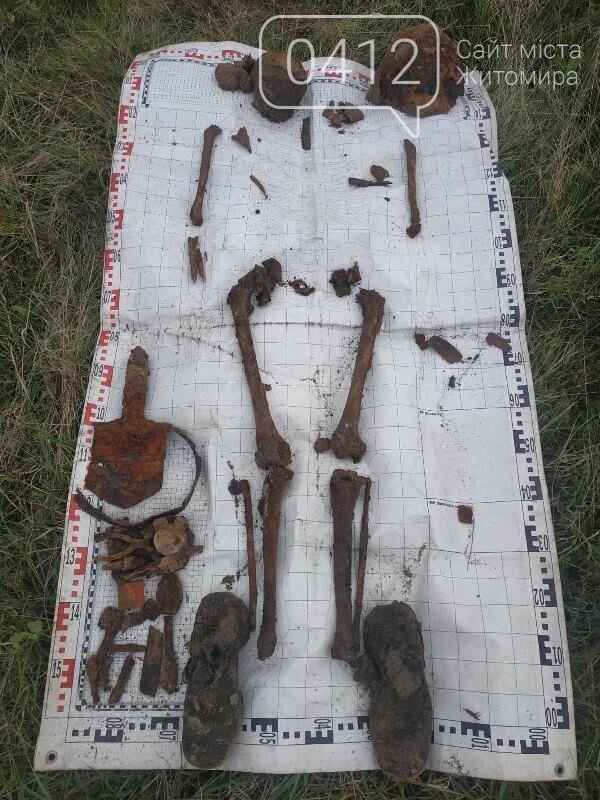 У Пулинському районі знайшли рештки солдата РСЧА, фото-9