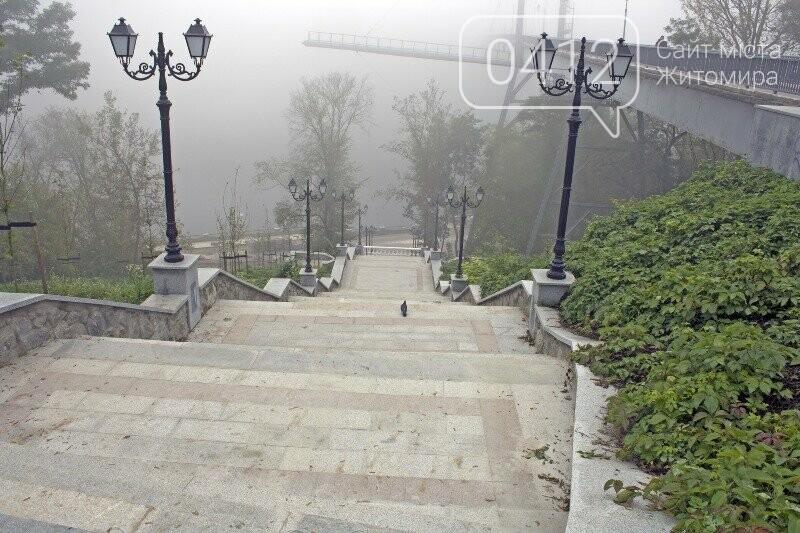 Осінь, парк, туман: фотопрогулянка жовтневим Житомиром, фото-12