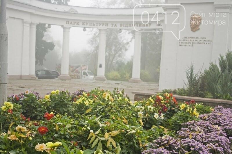 Осінь, парк, туман: фотопрогулянка жовтневим Житомиром, фото-13