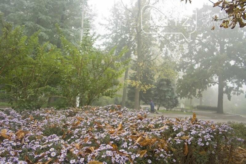 Осінь, парк, туман: фотопрогулянка жовтневим Житомиром, фото-14
