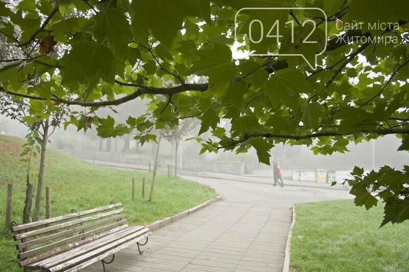 Осінь, парк, туман: фотопрогулянка жовтневим Житомиром, фото-2