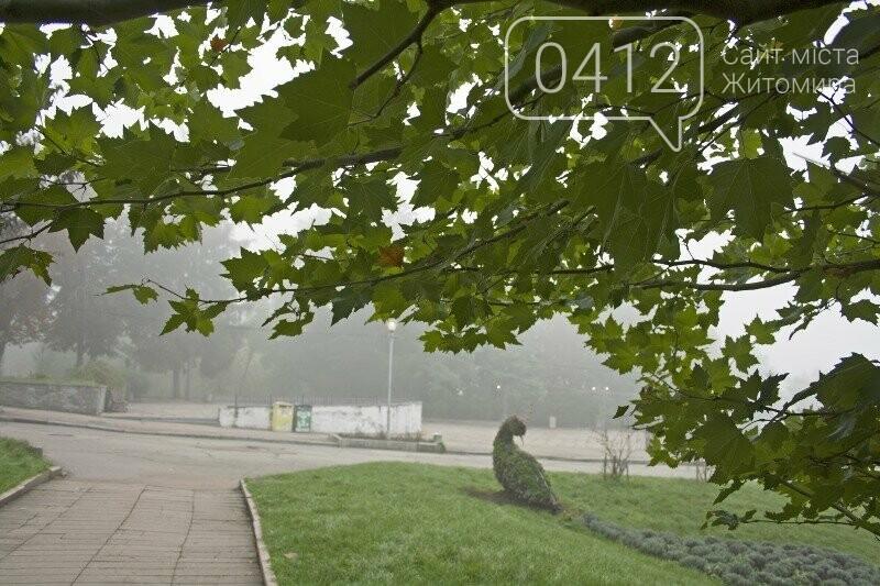 Осінь, парк, туман: фотопрогулянка жовтневим Житомиром, фото-3