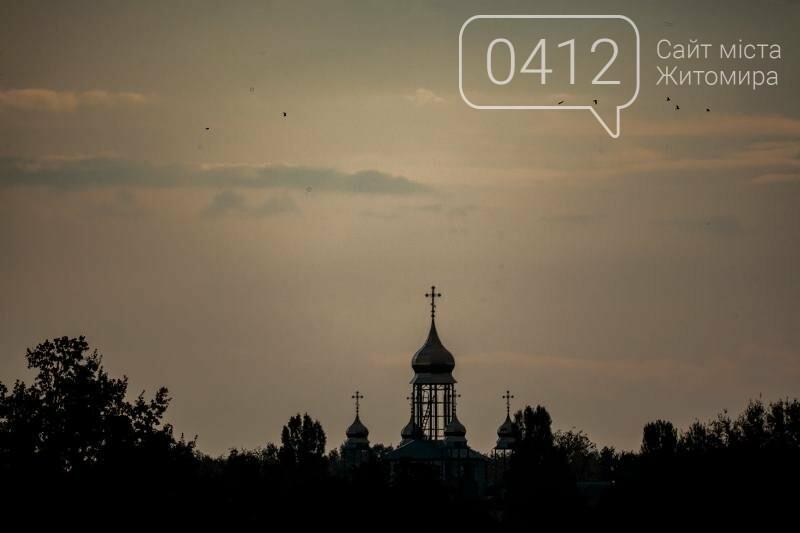 Водні мешканці, сільський колорит Житомирщини. ФОТО, фото-10