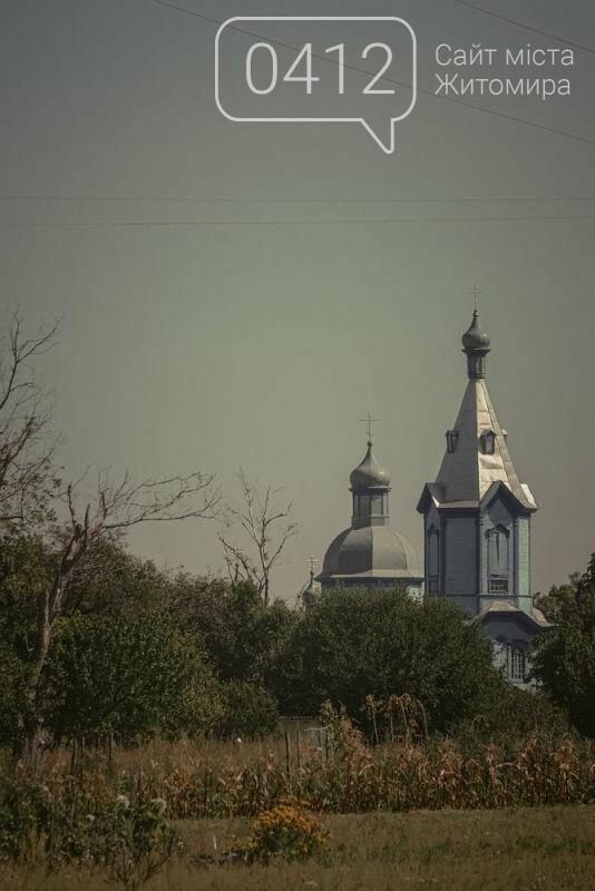 Водні мешканці, сільський колорит Житомирщини. ФОТО, фото-11