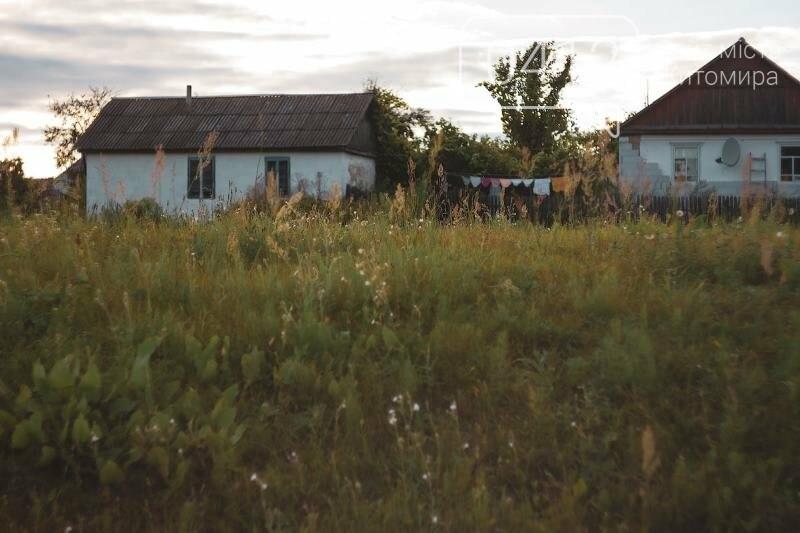 Водні мешканці, сільський колорит Житомирщини. ФОТО, фото-14