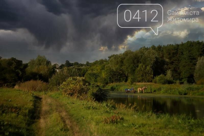 Водні мешканці, сільський колорит Житомирщини. ФОТО, фото-9