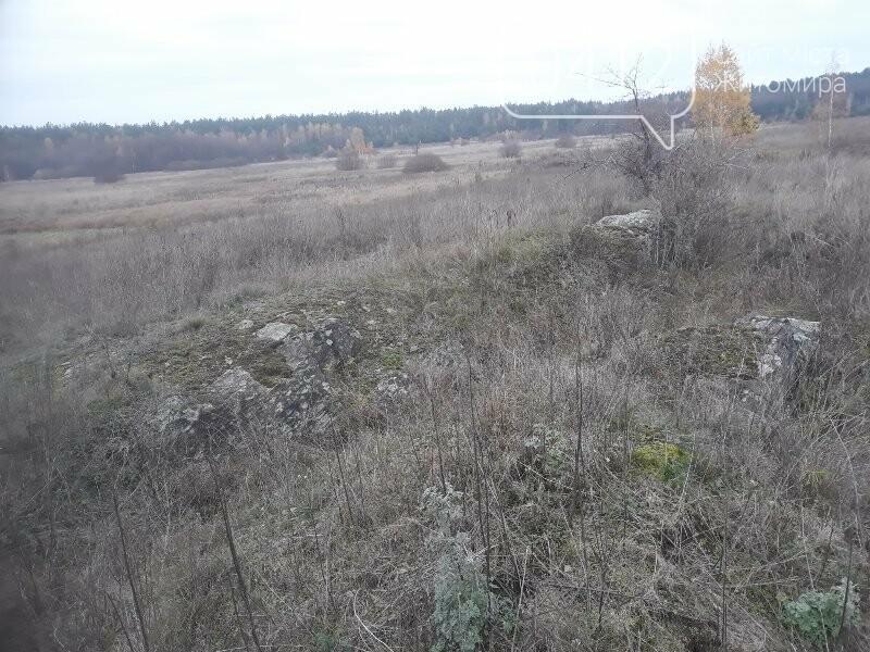 Місце з потужною енергетикою на Житомирщині: в мережі опублікували світлини «Мітькіного каміння», фото-8