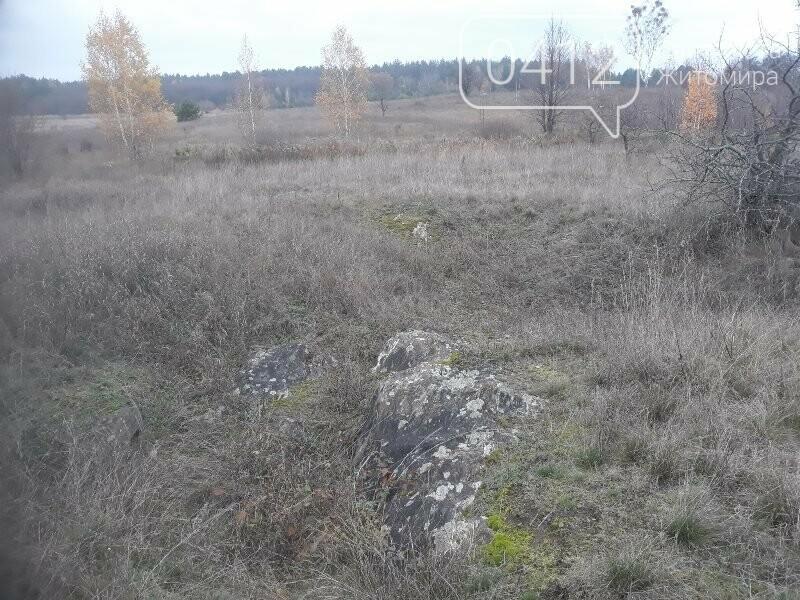 Місце з потужною енергетикою на Житомирщині: в мережі опублікували світлини «Мітькіного каміння», фото-9