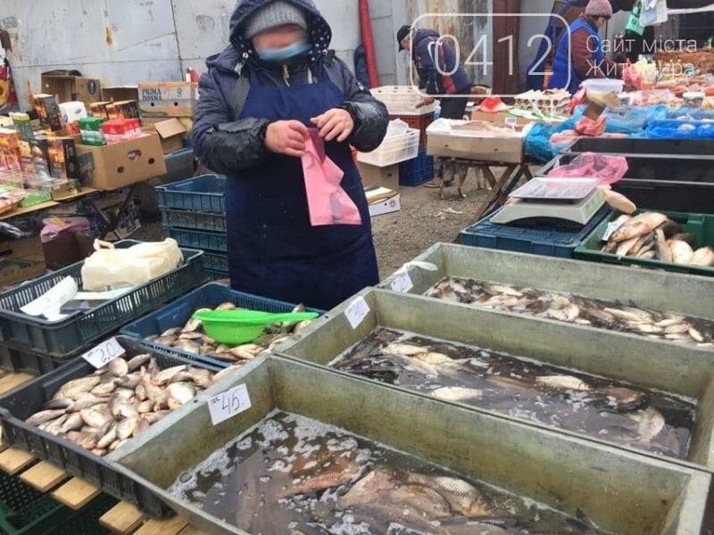 За три дні на Житомирщині виявлено 20 порушень правил рибальства, фото-1