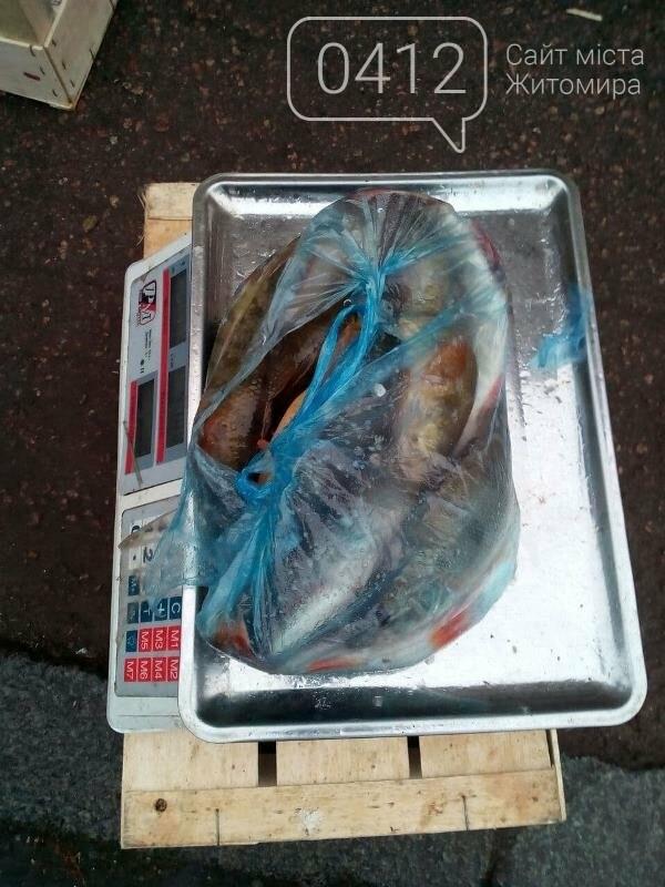 За три дні на Житомирщині виявлено 20 порушень правил рибальства, фото-2