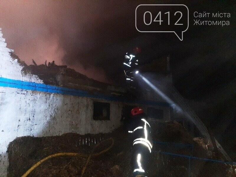 У Ружинському районы вогнеборці ліквідували загоряння господарчої будівлі та врятували від займання дім, фото-2