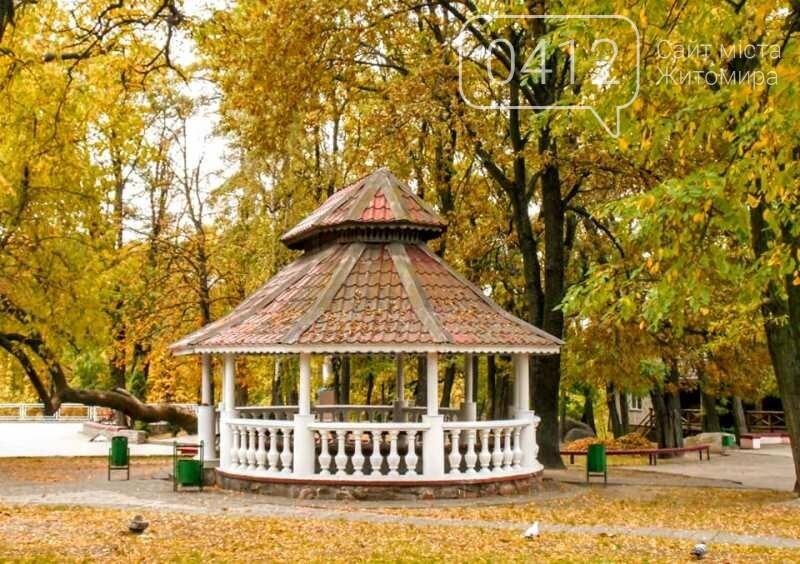 Дивовижний осінній парк у Коростені. ФОТО, фото-3