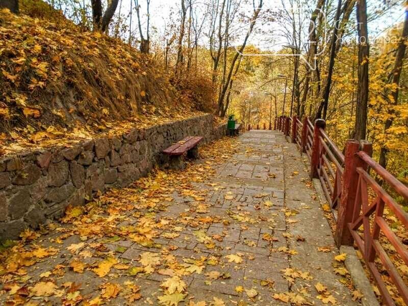 Дивовижний осінній парк у Коростені. ФОТО, фото-9