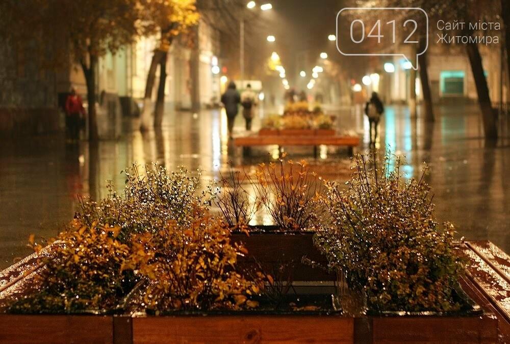 Неймовірний дощовий Житомир. ФОТО, фото-8