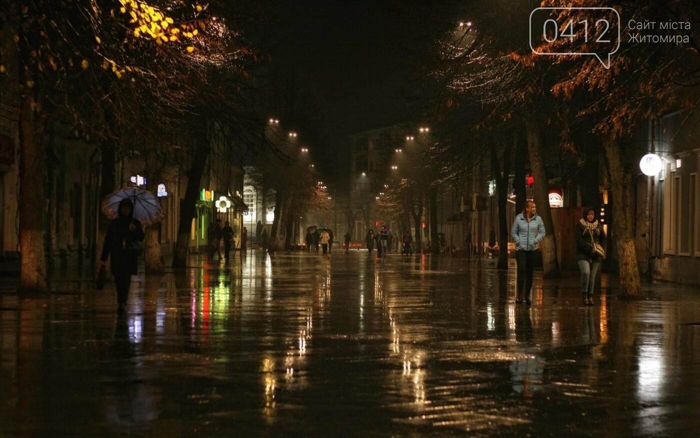 Неймовірний дощовий Житомир. ФОТО, фото-3