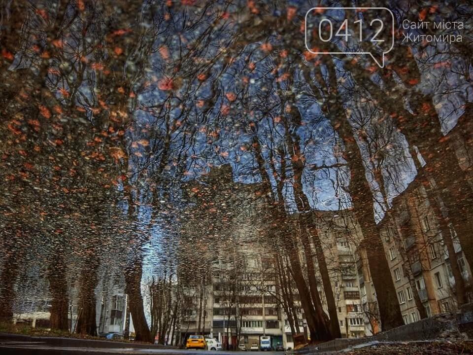 Колоритні куточки зимової Польової в Житомирі. ФОТО, фото-2