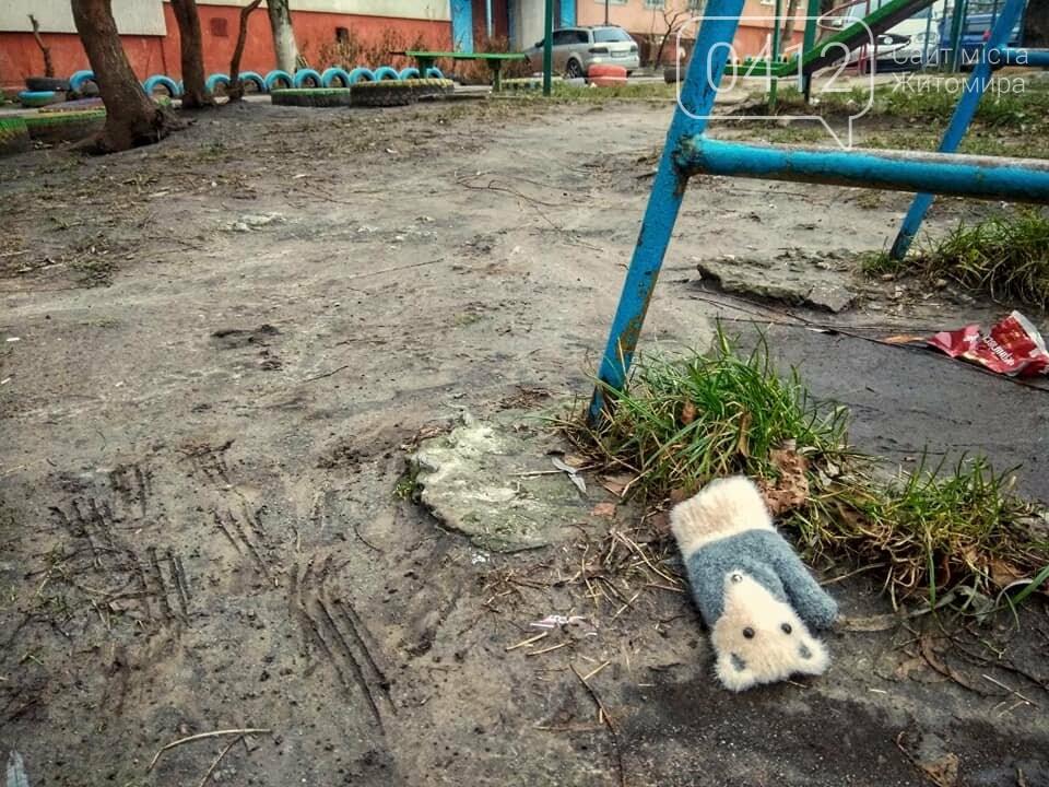 Колоритні куточки зимової Польової в Житомирі. ФОТО, фото-5