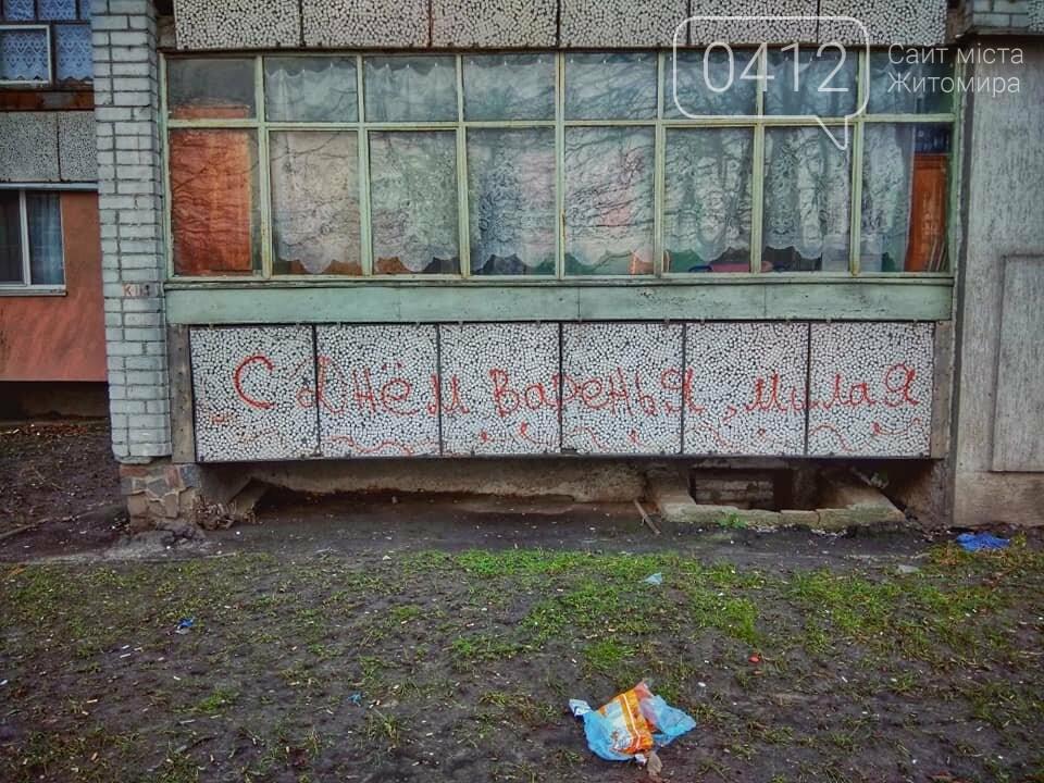Колоритні куточки зимової Польової в Житомирі. ФОТО, фото-8