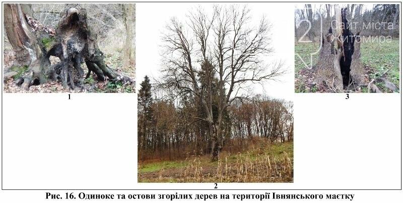 Стежками рідного краю: Івниця–Ліщин, фото-14