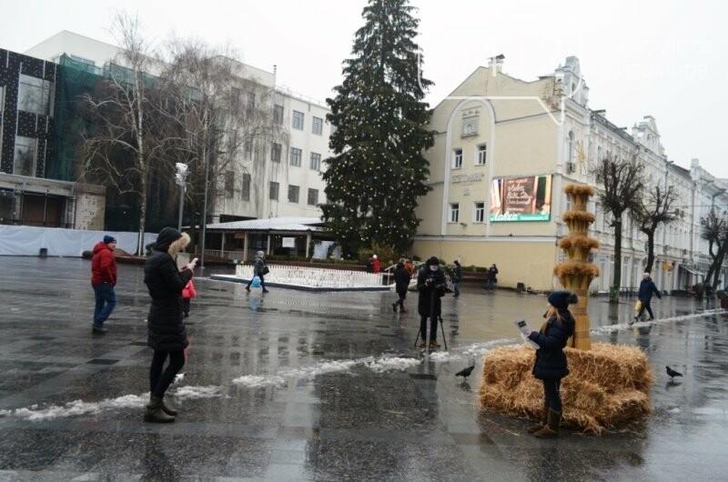 У переддень Різдва Христового до Житомира привезли Різдвяного Дідуха, фото-1
