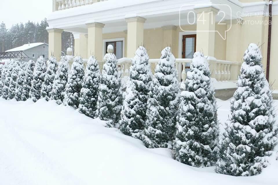 Справжня зима в жіночому монастирі на Житомирщині: у мережі опублікували дивовижні світлини. ФОТО, фото-11