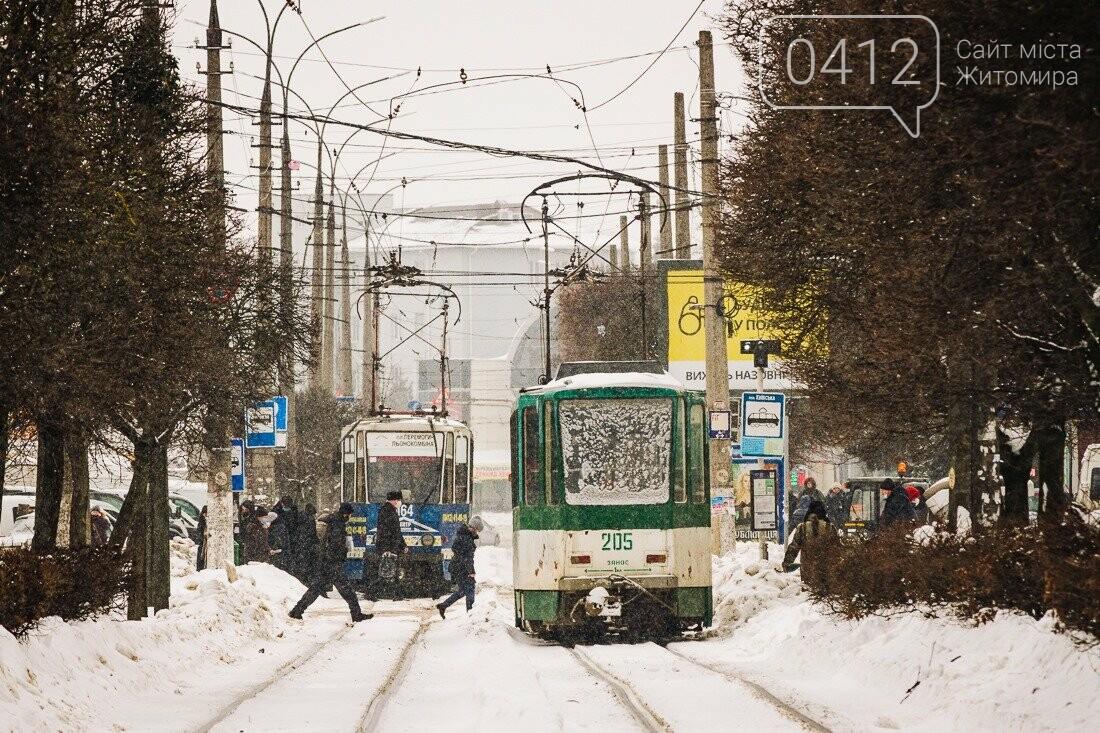 У ритмі зимового міста: колорит засніжених вулиць Житомира. ФОТО, фото-15