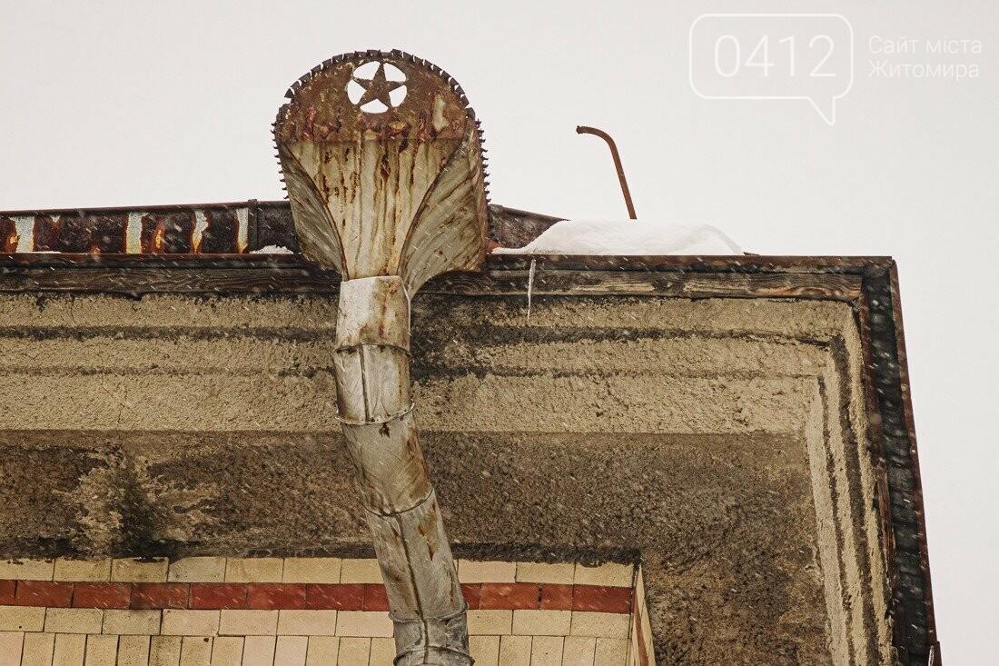 У ритмі зимового міста: колорит засніжених вулиць Житомира. ФОТО, фото-16