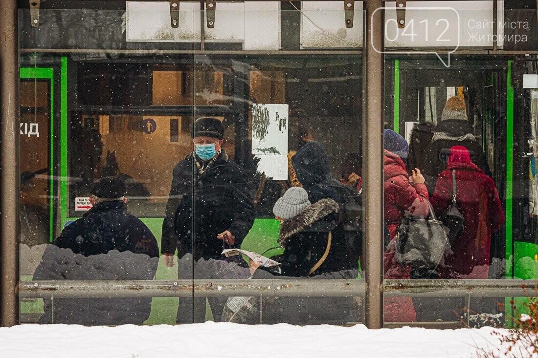 У ритмі зимового міста: колорит засніжених вулиць Житомира. ФОТО, фото-1
