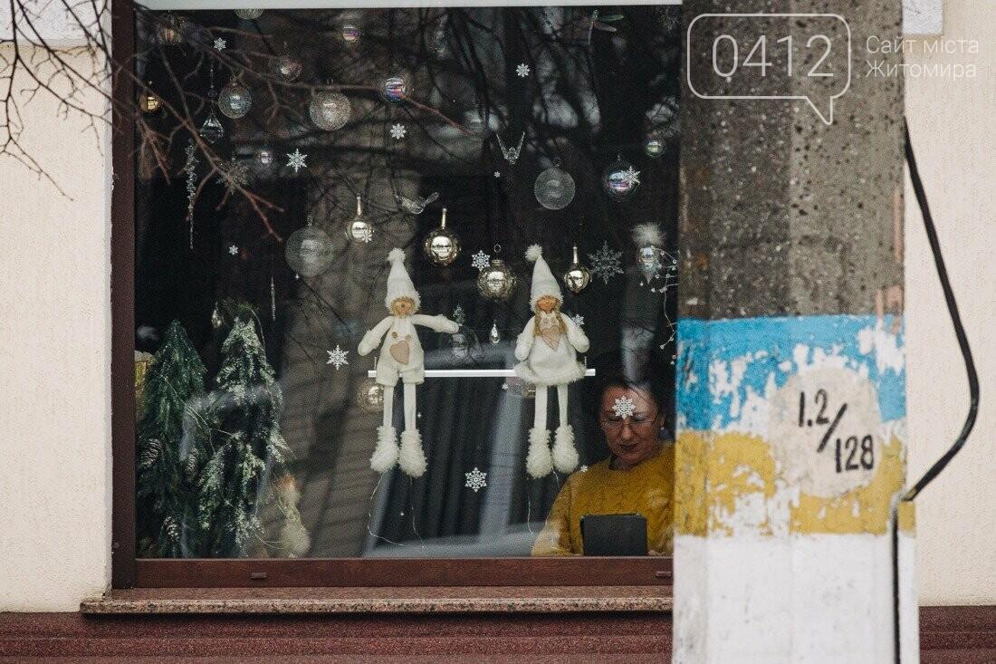 У ритмі зимового міста: колорит засніжених вулиць Житомира. ФОТО, фото-25