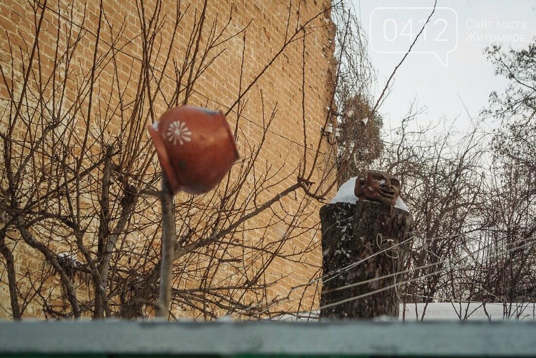 У ритмі зимового міста: колорит засніжених вулиць Житомира. ФОТО, фото-27