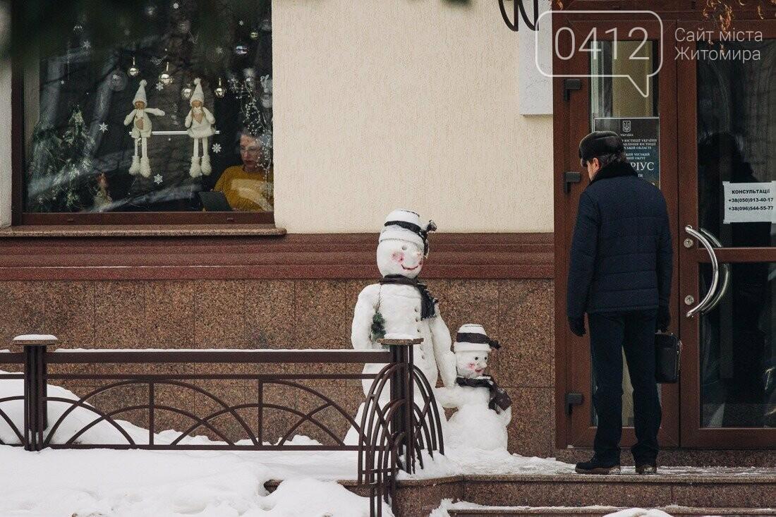 У ритмі зимового міста: колорит засніжених вулиць Житомира. ФОТО, фото-29