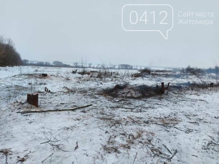 Чи законно вирізають садок у Карабчиєві на Житомирщині?, фото-1