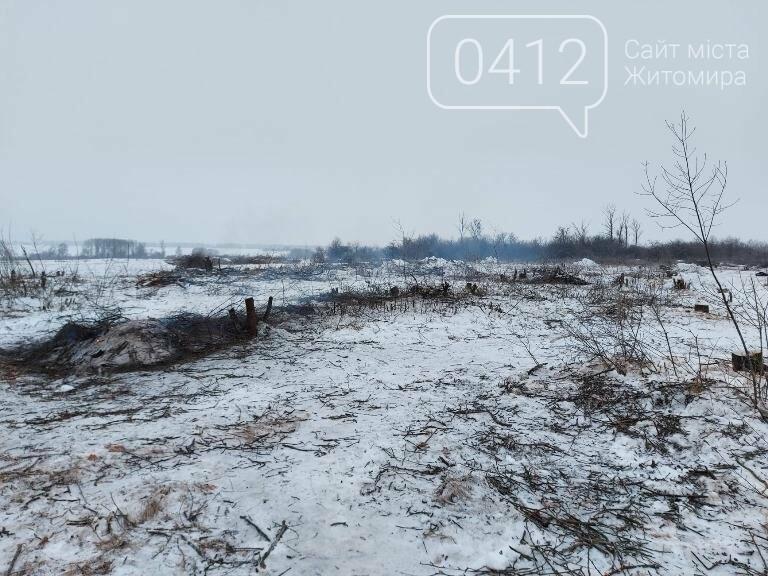 Чи законно вирізають садок у Карабчиєві на Житомирщині?, фото-5