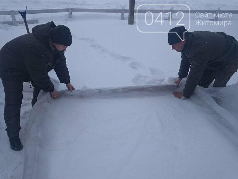 Городницькі лісівники снігують насіння хвойних, фото-4