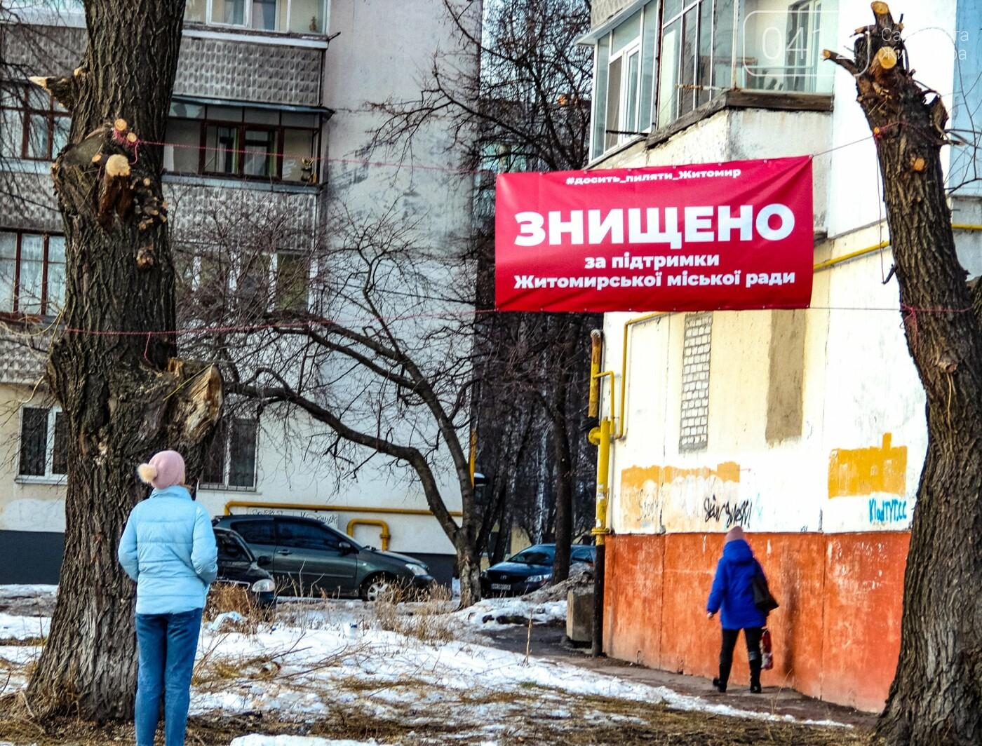 У Житомирі забили на сполох через те, як в місті обрізають дерева. ФОТО, фото-1