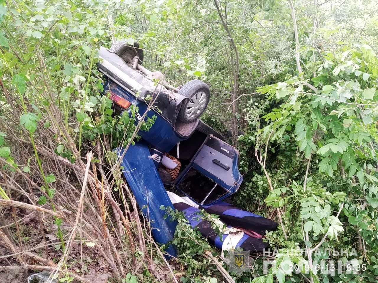 Нетверезі чоловіки на Житомирщині розтрощили новокуплену автівку, фото-1