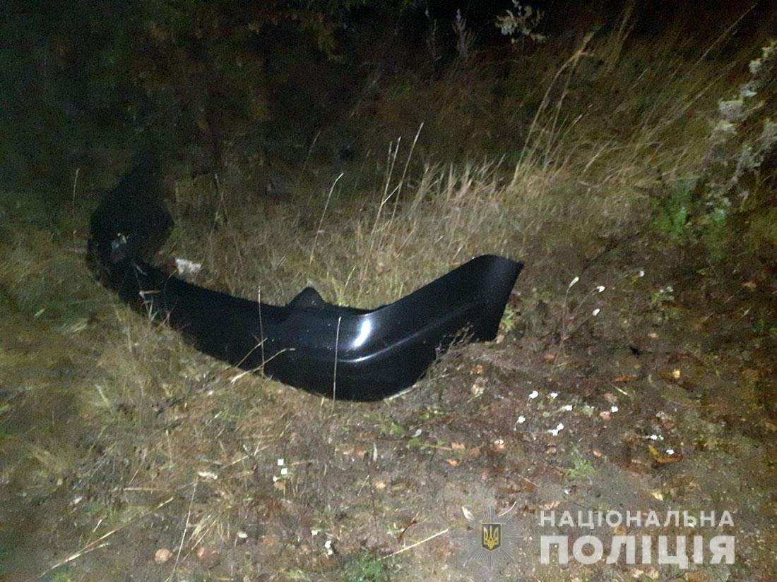 У Житомирській області нетверезий керманич спричинив ДТП, фото-3
