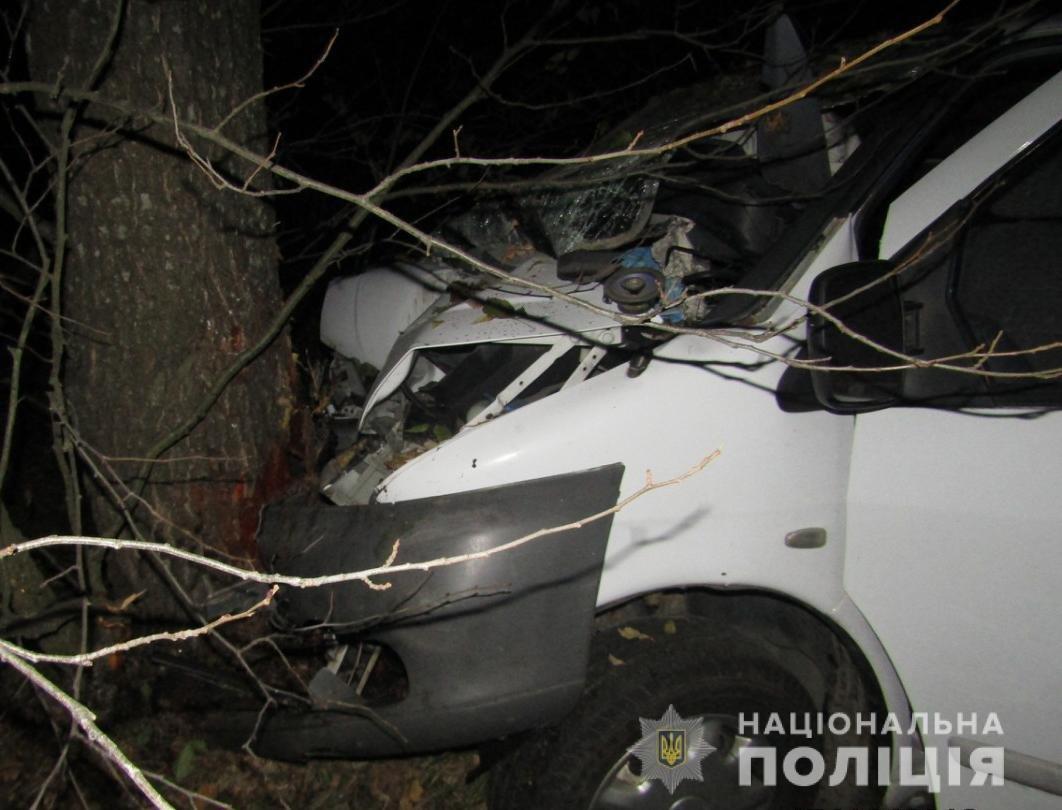 У фатальній аварії на Житомирщині загинув чоловік, фото-2