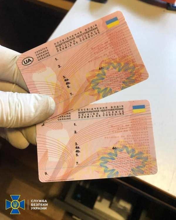 СБУ Житомирщини викрила міжрегіональну групу, що підробляла документи державного зразка, фото-1
