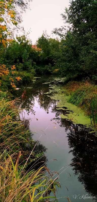 На берегах річки Лісової: Живописні осінні краєвиди в Житомирі. ФОТО, фото-1