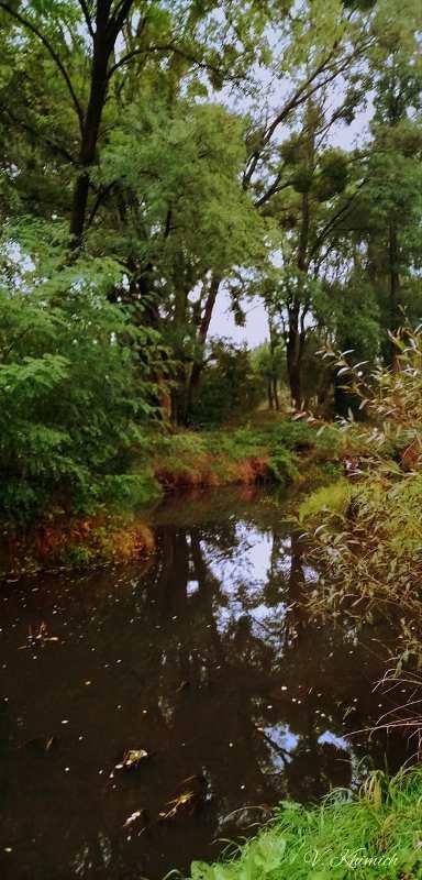 На берегах річки Лісової: Живописні осінні краєвиди в Житомирі. ФОТО, фото-2