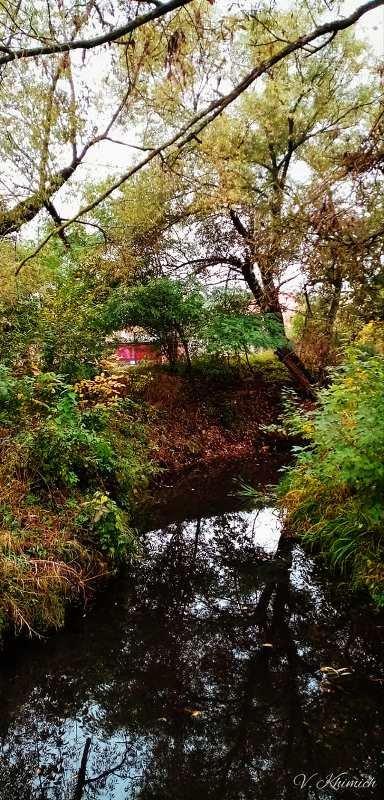 На берегах річки Лісової: Живописні осінні краєвиди в Житомирі. ФОТО, фото-4